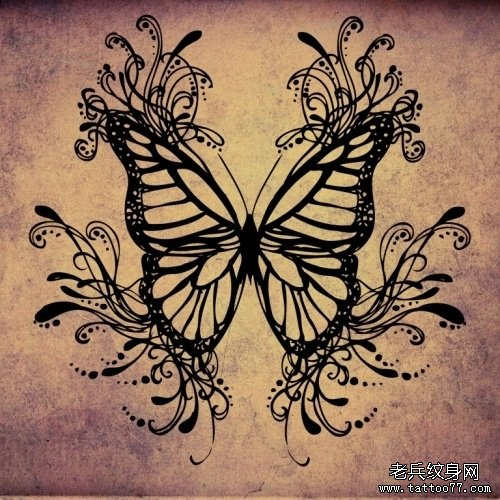 一款漂亮的图腾蝴蝶纹身手稿图片