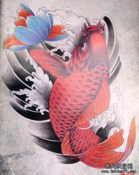 为大家提供一款漂亮的鲤鱼莲花纹身手稿