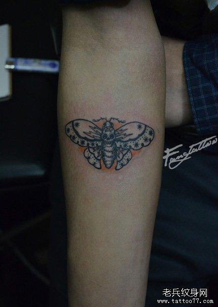 手臂一款清晰精美的蝴蝶纹身图案