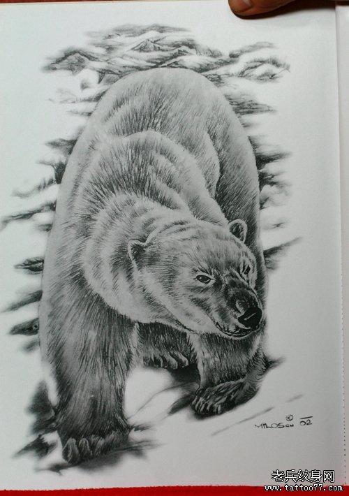 一款北极熊纹身手稿