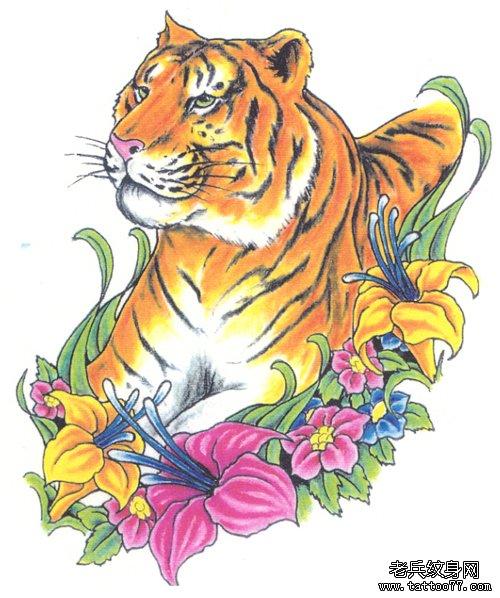 一款老虎纹身手稿为北京纹身爱好者提供