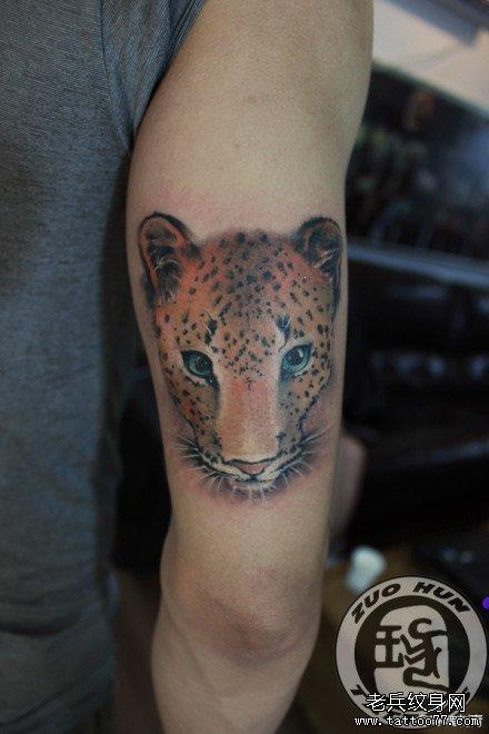 cn/         手臂卡哇呀的小鹿纹身图案 分享        武汉老兵纹身店!