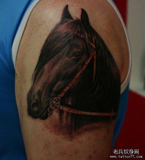 男人手臂帅气时尚的马纹身图案