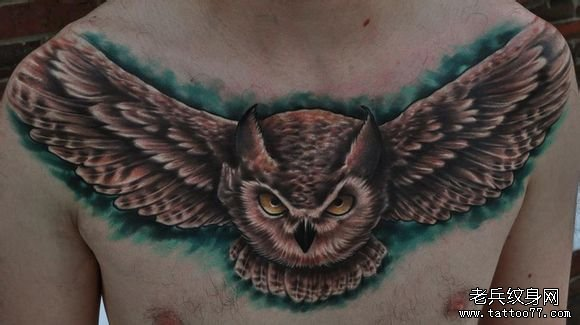 男人前胸超酷凶悍的猫头鹰纹身图案