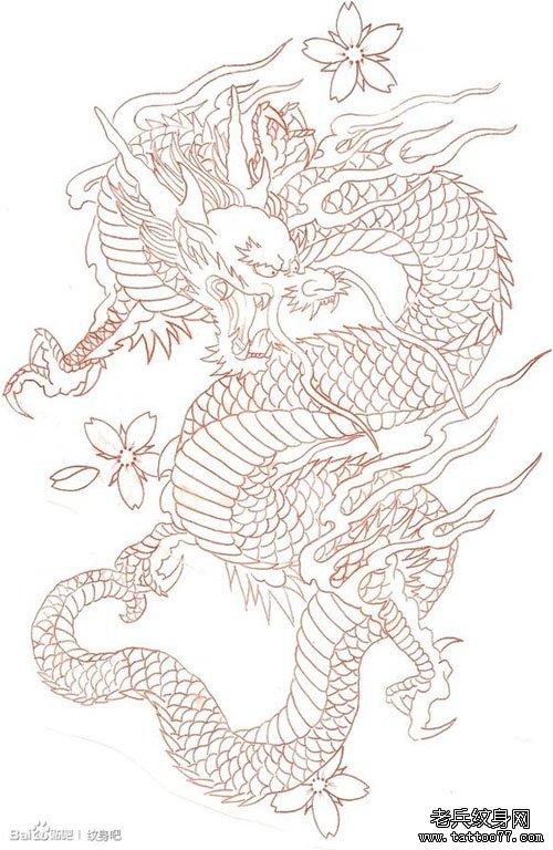 男人喜欢的经典的满背线条龙纹身手稿