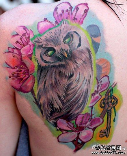 女生后肩背很酷经典的猫头鹰纹身图案