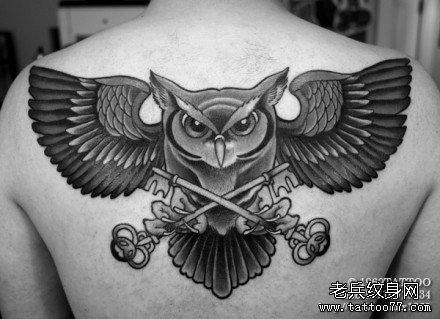 男人后背经典的传统猫头鹰纹身图案