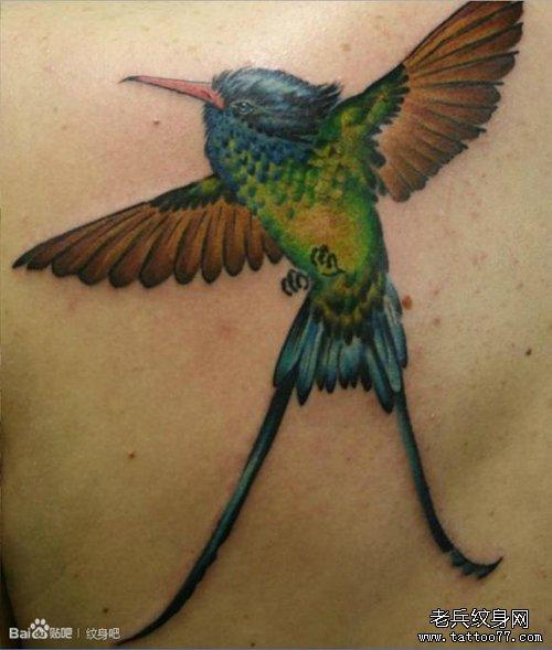 后背经典时尚的一款小鸟纹身图案