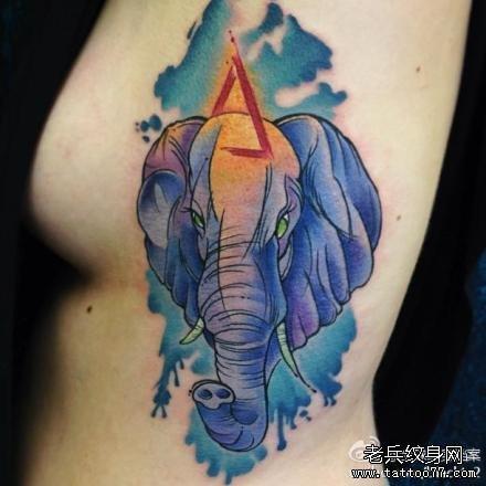美女侧胸经典潮流的大象纹身图案