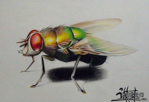 一款非常漂亮逼真的苍蝇纹身图片