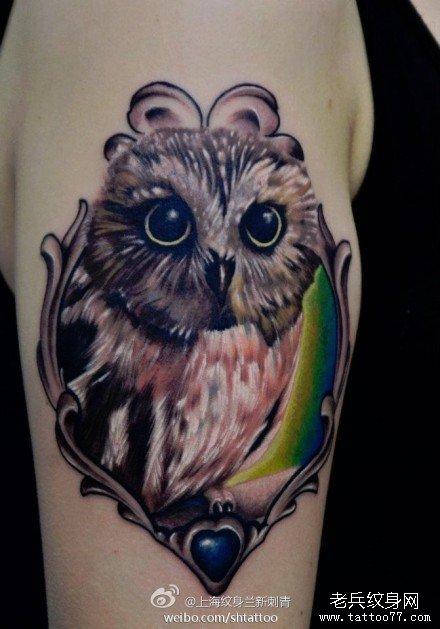 手臂纹身 手臂猫头鹰纹身图案