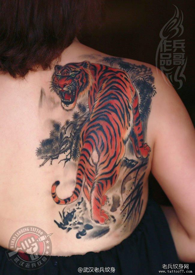 两个月前为一美女打造的上山虎纹身作品恢复后效果