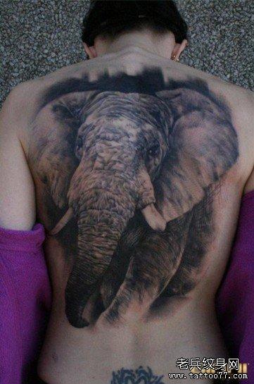 推荐大家欣赏一款满背大象纹身作品