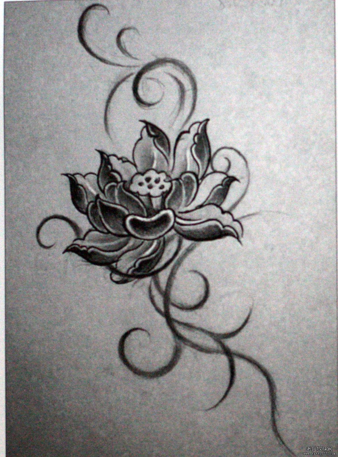 武汉最好的纹身网推荐一款莲花纹身手稿图案