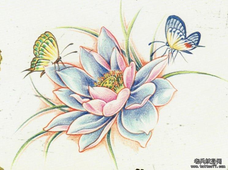 莲花蝴蝶纹身手稿图由武汉纹身店推荐图片