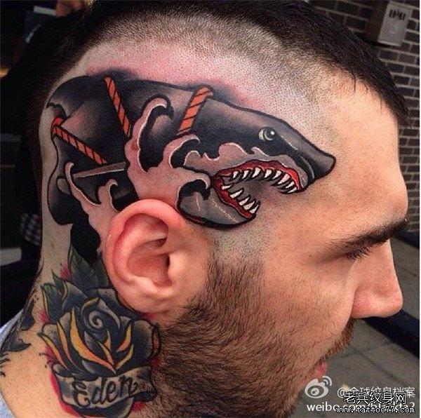 头部个性school鲨鱼纹身图案由武汉纹身店推荐