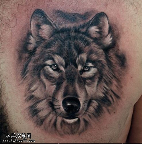武汉最好的刺青店推荐一款胸口狼头纹身图案