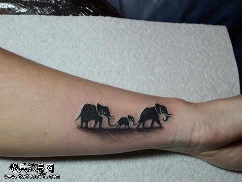 武汉最好的纹身店推荐一款手臂象纹身图案