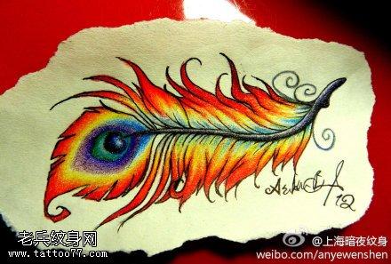 彩色孔雀羽毛纹身手稿图片