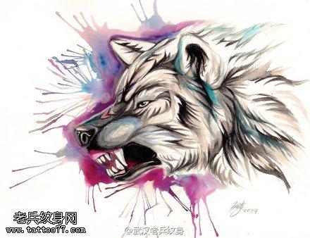 纹身主页 纹身图案大全                狼很团结,态度很单纯,狼与狼