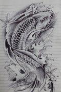 武汉最好的纹身店推荐一款鲤鱼纹身手稿图案图片