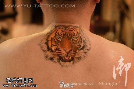 背部老虎纹身图案