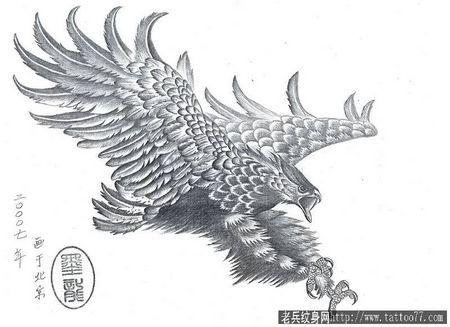 雄鹰展翅纹身 雄鹰展翅图片简笔画