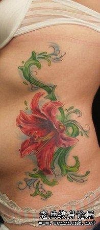 腰部纹身图案大全:腰部图腾花卉藤蔓纹身