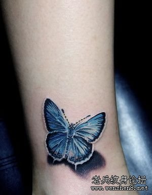 女性纹身图案大全:美女腿部彩色蝴蝶纹身图案图片图片